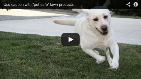 4-9-14 Use caution with pet-safe lawn products